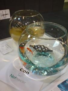 netnocor fish5