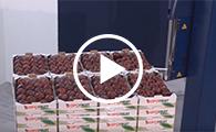 Palettes de fruits