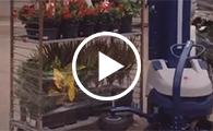 Chariots à plantes